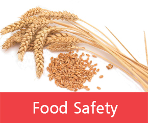 BioSystems Food Quality and Enology Solutions